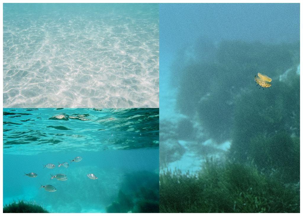 Unter_Wasser